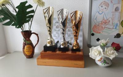 Gewinner des offenen Schachturniers am 5. Juli 2020
