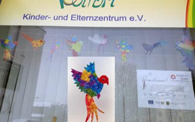 Vögel im Schaufenster